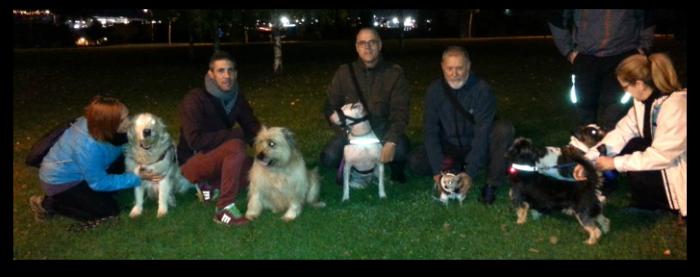 Una historia real: propietarios de perros salvan a un hombre